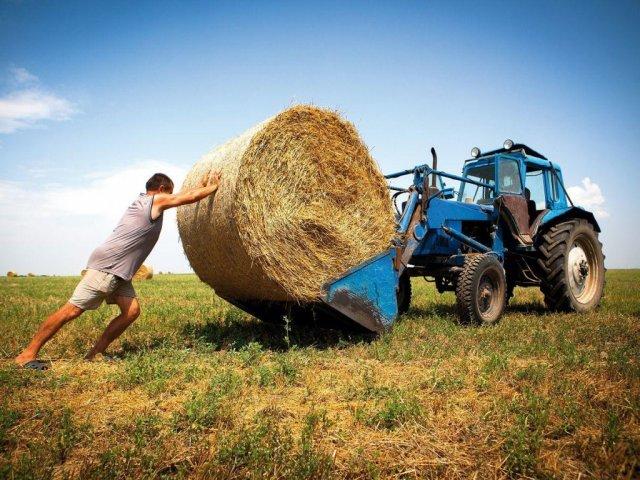 Закон о рынке земли ставит украинцев в неравные условия с банками и корпорациями - эксперт