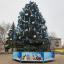 В Константиновке назвали дату открытия новогодней ели