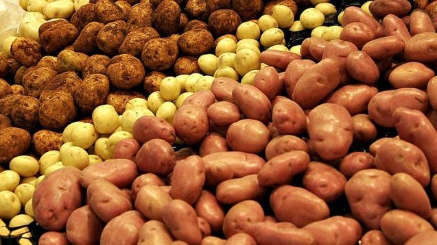 Снижение урожая картофеля в 2015 г. вызовет взлет цен — эксперт.