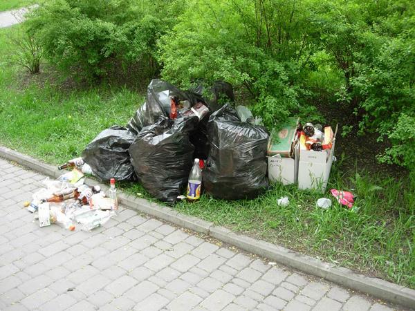 В Константиновке штрафуют предпринимателей за неухоженные территории