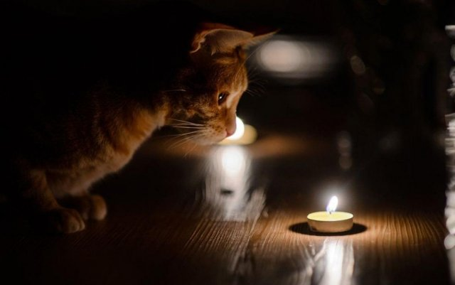 Где сегодня ночью в Константиновке отключат свет
