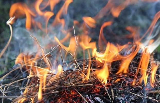 В 7 областях Украины – высокая пожарная опасность