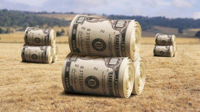 79% украинцев против продажи земли иностранным компаниям