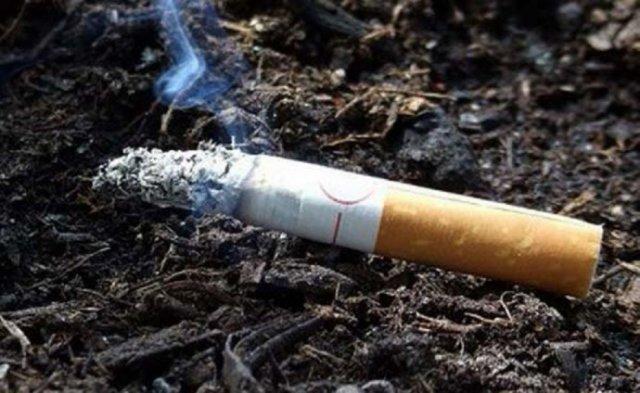 В Украине подорожали сигареты - Госстат