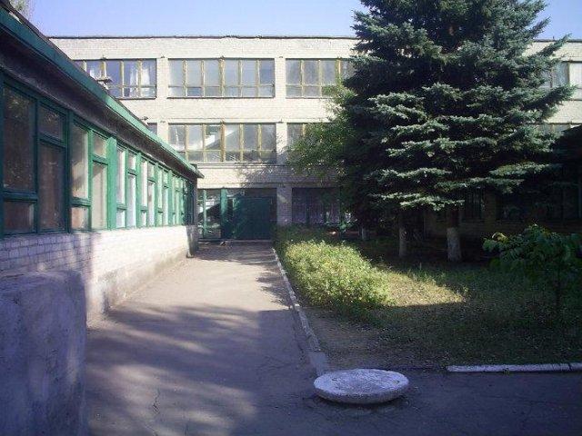 В Константиновке 10-12 классы предлагают оставить только в одном учебном учреждении