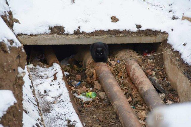 Порыв труб отопления в Константиновке: Список адресов