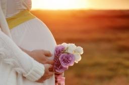 Программа донорства яйцеклеток